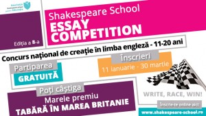 2016 Essay Competition imagine site-blog