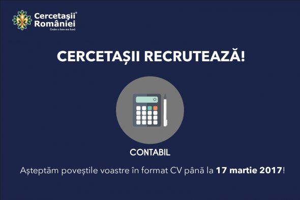 Contabil-WP-02-1-590x395